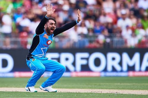 Rashid Khan has 38 wickets from 31 IPL matches