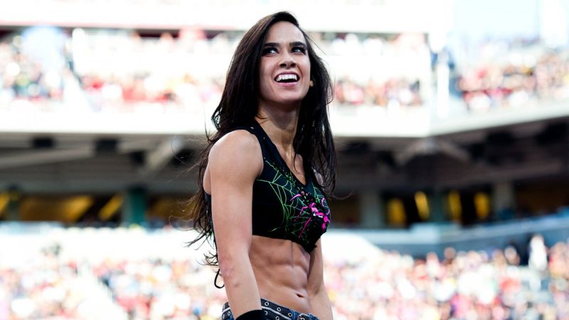 AJ Lee left wrestling in 2015 and recently published her own Autobiography.