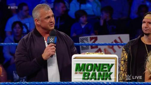 Image result for wwe womens mitb briefcase