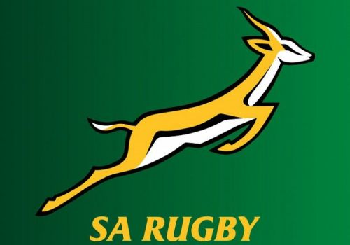 2019 is very important for the Springboks