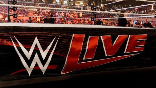 Image result for wwe live event