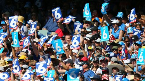 BBL crowd - cropped