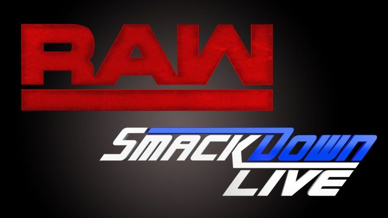 Image result for wwe raw and smackdown logo