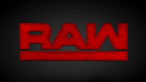 Image result for wwe raw logo
