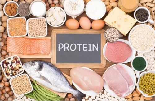 A diet that has protein in adequacy can boost work performance as well as enhance learning and motor skills, whereas inadequate protein consumption has the ability to do the opposite.
