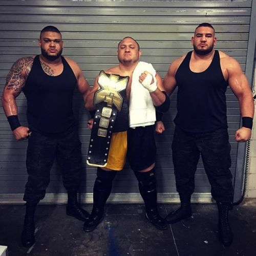 Samoa Joe and AOP: Pure Destruction