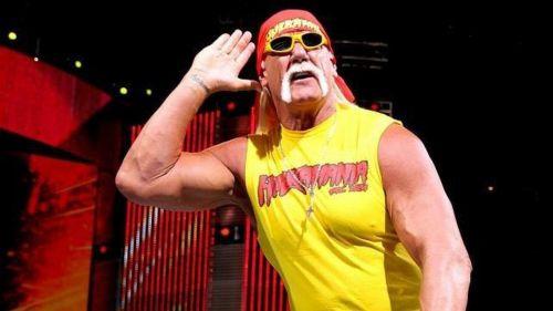Hulk Hogan was crowned the new WWE Champion at WrestleMania IX