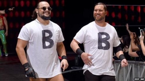 Bo Dallas and Curtis Axel both make up the team that is known as the B-Team.