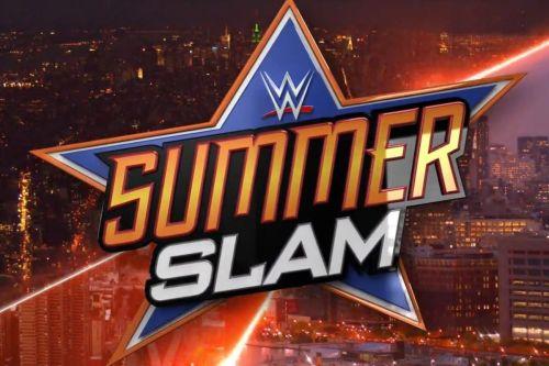 Image result for summer slam wwe logo