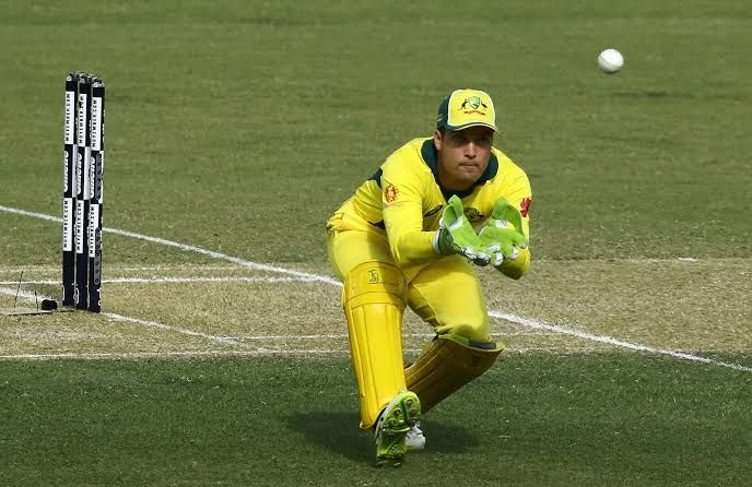 Alex Carey is the Best Wicket Keeper in this World Cup.
