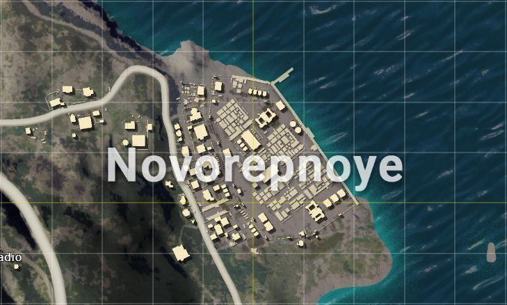 Novorepnoye