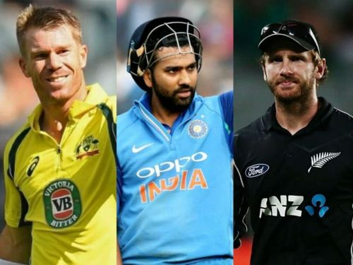 Rohit Sharma, David Warner and Kane Williamson were the highest run-scorers of their respective teams