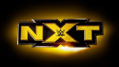 Image result for nxt wwe logo