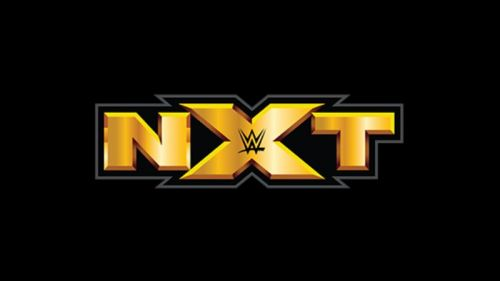 The stars of the WWE future compete at NXT live events