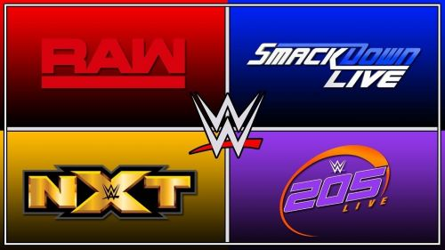 Image result for wwe raw smackdown nxt