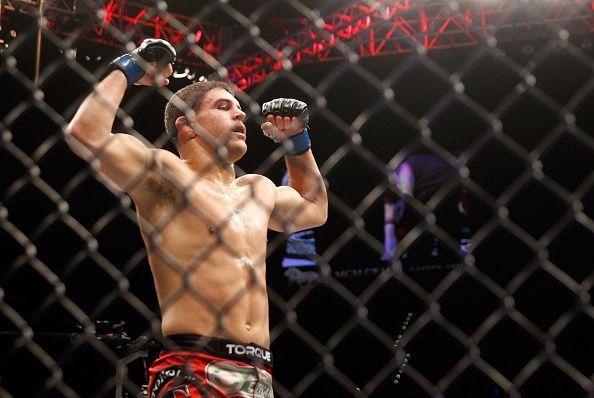 UFC 183: Lauzon v Iaquinta