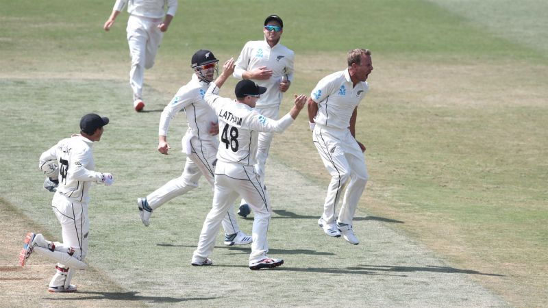 New Zealand celebrate against England