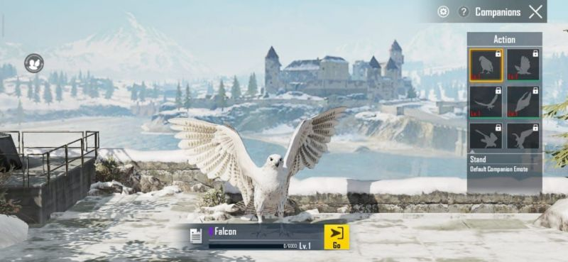 Falcon companion in PUBG Mobile