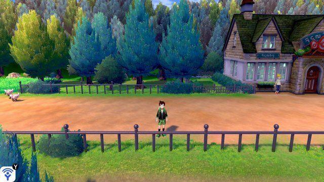 Grass Gym