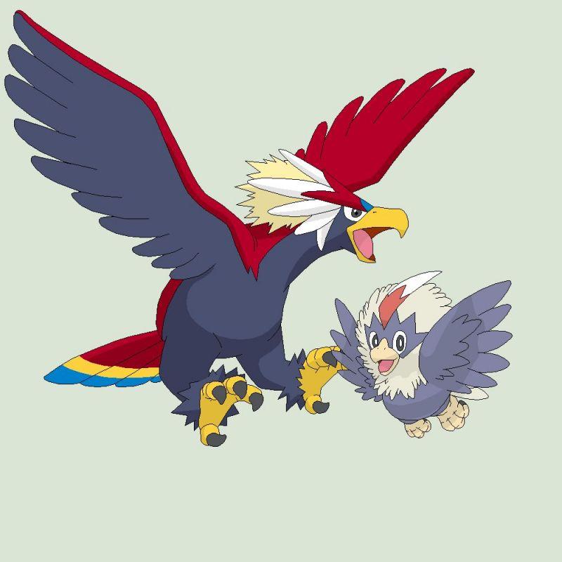 Image result for Rufflet Braviary pokemon