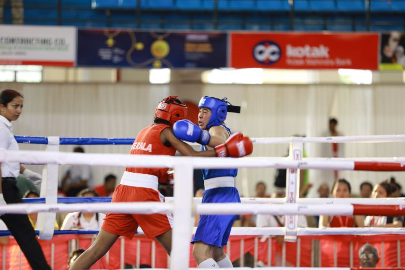 The boxers in action