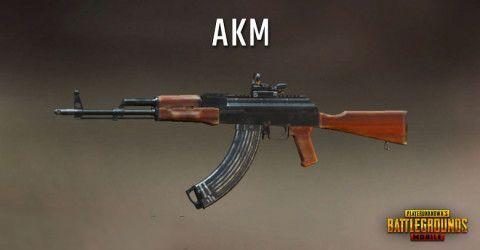 AKM in PUBG Mobile