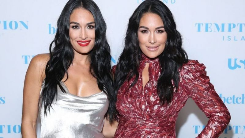 Do The Bella Twin s belong in The WWE Hall of fame?
