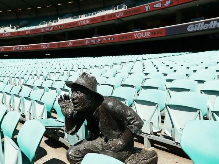 The only spectator at the first ODI between Australia and New Zealand had bones made of metal