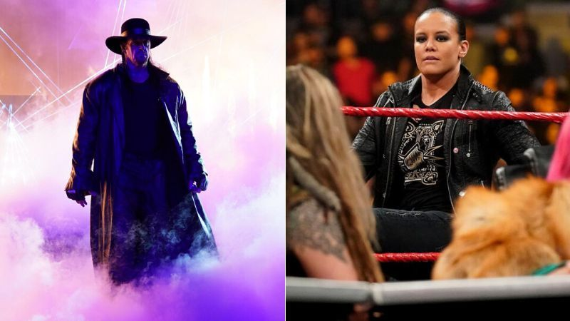 Will The Undertaker appear at Elimination Chamber?