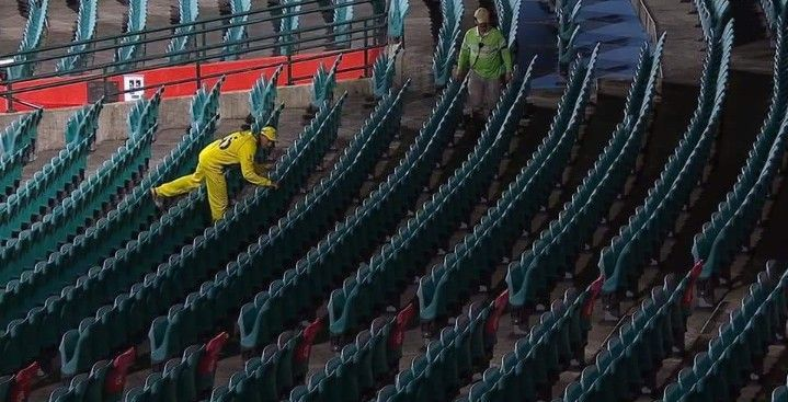 One of the many weird photos that went viral after the Sydney ODI