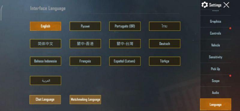 Çeşitli dil seçenekleri