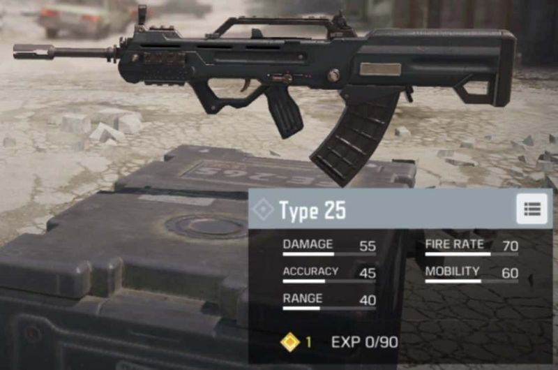 Type-25 in Call of Duty