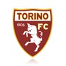 Torino Football Profile Picture