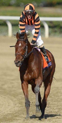 Jockey Ramon Dominguez on Little Mike