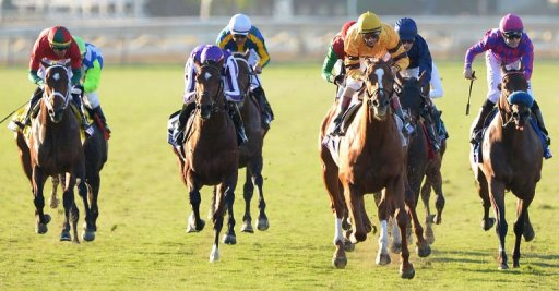 Jockey John Velazquez on Wise Dan (2R) rides for victory at the Breeders' Cup Mile