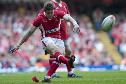 Wales are the reigning European champions, having claimed a third clean sweep of the Six Nations in eight years