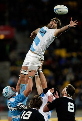 Argentina come into Saturday's match against Wales fresh from a promising debut in the Rugby Championship