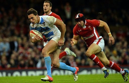Argentina beat European champions Wales 26-12 in the shock result of the first round of November touring internationals