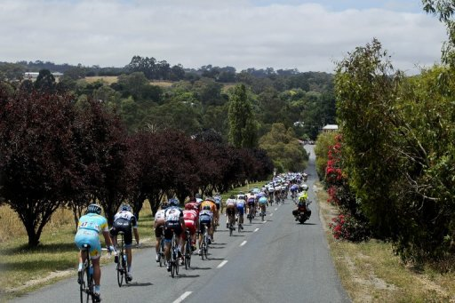 Since Lance Armstrong scandal broke, two senior Aussie cycling figures have admitted to doping