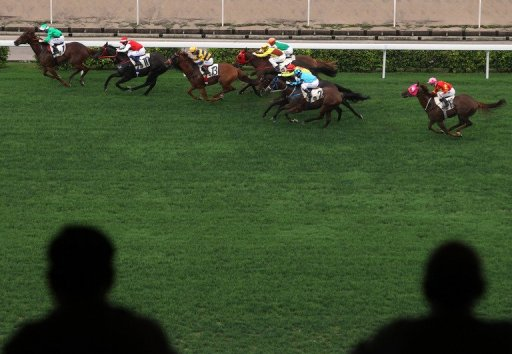 A former Hong Kong champion horse racing trainer has been jailed for corruption while running in a local election