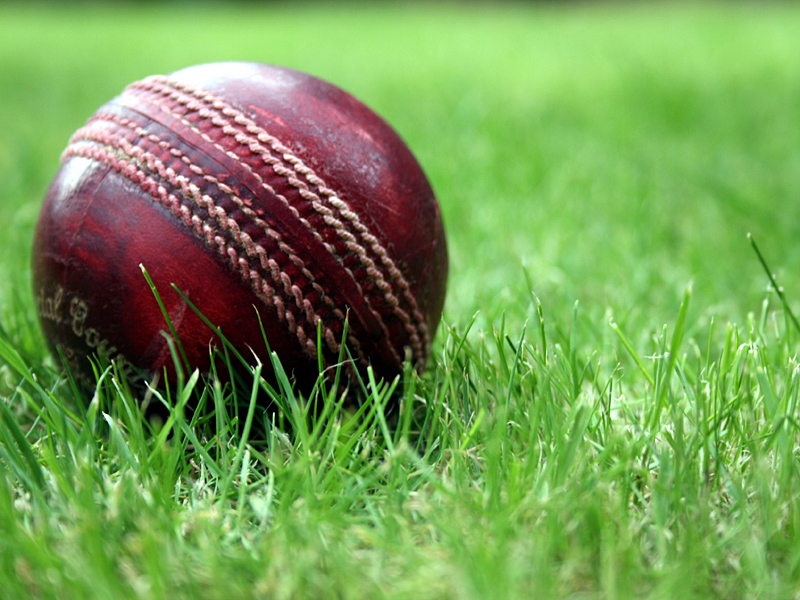 cricket_stock