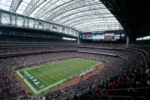 Fans watch the action between the Houston Texans and the Minnesota Vikings at Reliant Stadium on December 23, 2012