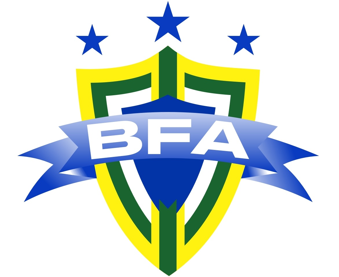 BFA Final logo.