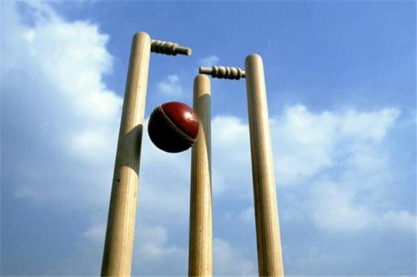 Cricket_stock2