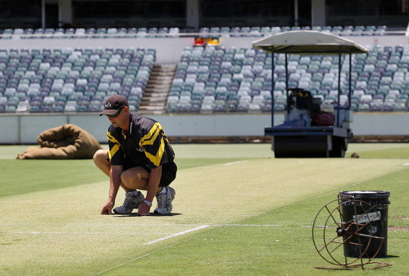 A curator examines the pitch