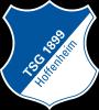 TSG Hoffenheim Football Team