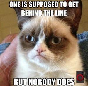 g_grumpy cat