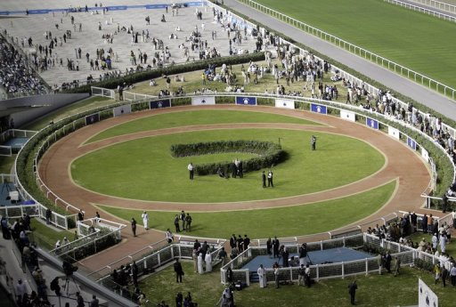 Dubai's Meydan racecourse on January 28, 2010