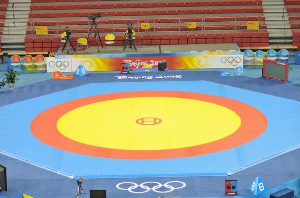 freestyle wrestling mat