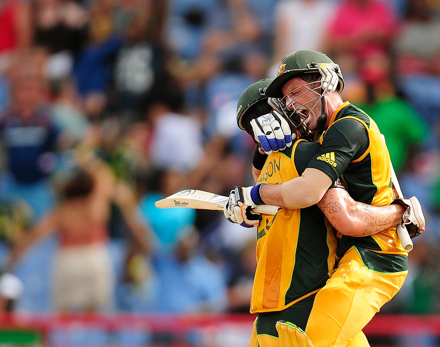 Image result for mike hussey 2010 world cup
